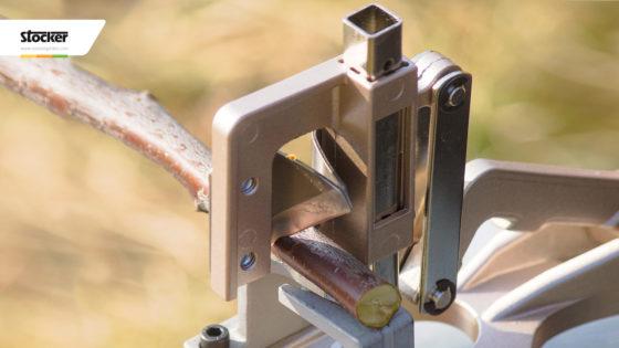 Thumbnail: Innesto meccanizzato a spacco vuoto