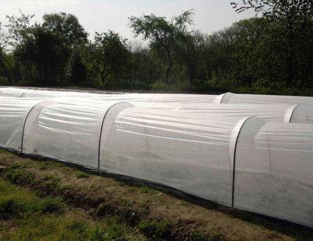 Tunnel per orto