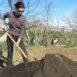 Cumulo di compost