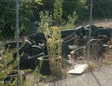 Pneumatici usati, luogo in cui può nidificare la Zanzara Tigre.