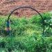 Svuotare il sistema di irrigazione in vista del freddo